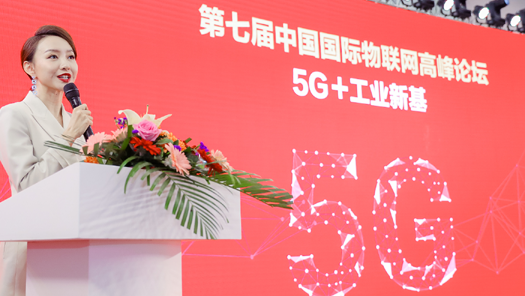 IoTF 中国国际物联网高峰论坛